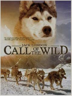 a summary of jack londons call of the wild Jack london's best adventure story was his own life though closely identified  with california, where he was born in san francisco in 1876 and died near glen .